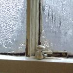 Severe mould on window (3)