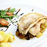 Fillets of the fish with rattatouille, potato and rucola