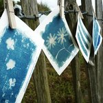 Cyanotype photography holidays, workshops and courses in St Agnes, Cornwall