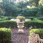 The garden and fountain