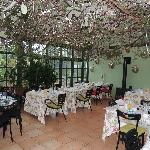 LIke dining in a garden...