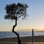 Photo de Port Eugeni