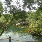 Jardin del Eden 07/2012