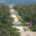 vue du Jardin d'Essai depuis la terrasse