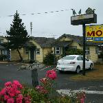 Seaview Motel (cottage 5 in foreground)