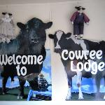"""Welcome to Cowree Lodge"