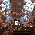 amazing! kelvingrove museum