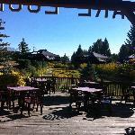Sunny patio and pretty gardens