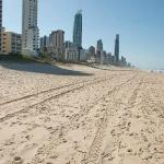 On Surfer's Paradise Beach