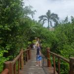 walkway to pool and beach