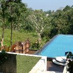 View at pavilion