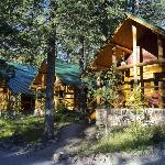 Some of the log cabins on the site