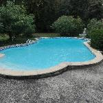 Pool im Park