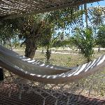 Bungalow hammock
