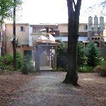 Back entrance.