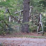 Wood sculpture linig driveway.