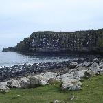 Coast near Dunstanburgh