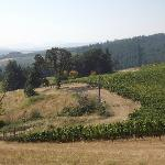 Portland wine trail