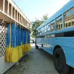 The bus and paddles