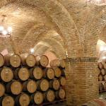 Domed ceilings in Wine Room