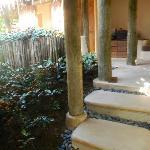 garden in the villa