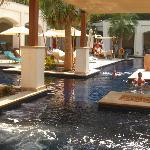 piscine adultes