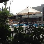View of the pool from the restaurant.