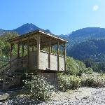 Bear Viewing Platform