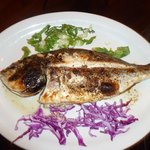 good grilled fish