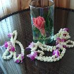 Garlands presented to us on arrival