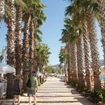 Promenade par la plage