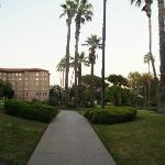 Hotels grounds, pathway from pool back to main building