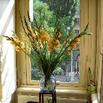 fiori nella sala