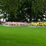 Pasto y flores