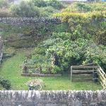 Sweet garden next door