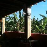 Alola Inn Foto