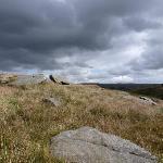 Gorple Moors