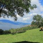 Wow Amazing wine & scenery at Arrowleaf!