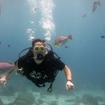 Diving with Phuket Scuba Diving Tours