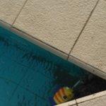Sabbia in piscina