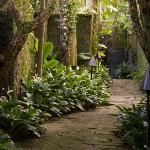 Pathway, Kayumanis Ubud