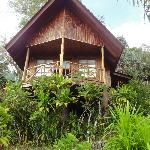 our cottage (6)