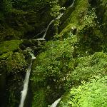 Ambleside waterfalls - good to visit 15 mins from hostel