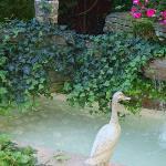 Pond in the backyard garden.