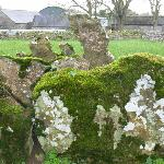 Part of a stone circle outside Bruff, Ireland.