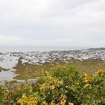 Vue sur la baie, à marée basse