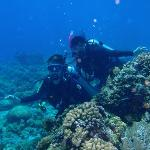 diving at Bunaken