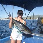 Got Tuna