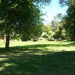 beautiful grounds