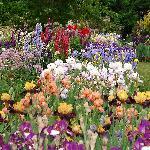Schreiner's Display Gardens